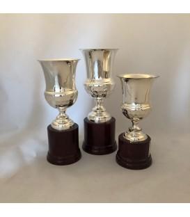 Premiazione in Argento Coppa 450